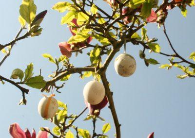 Pasen 2020 vier ik samen met mijn magnolia